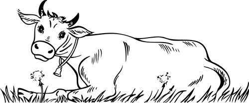 Coloriage et dessins gratuits Boeuf dans le champ à imprimer