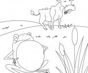 Coloriage et dessins gratuit Boeuf et grenouille à imprimer