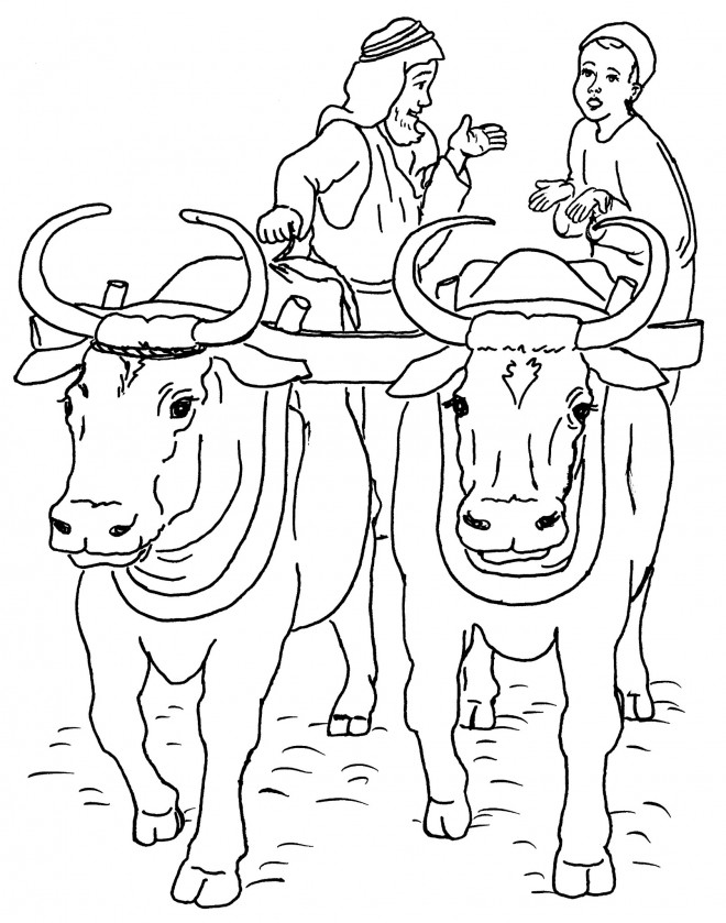 Coloriage et dessins gratuits Paysan et Boeufs à imprimer