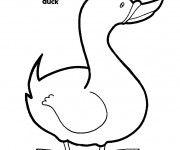 Coloriage et dessins gratuit Canard en noir et blanc à imprimer