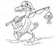 Coloriage Canard pêche un poisson