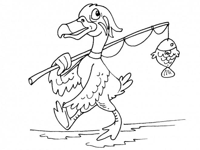 Coloriage et dessins gratuits Canard pêche un poisson à imprimer