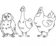 Coloriage Canard, poulet et hibou