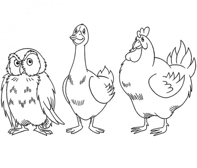 Coloriage et dessins gratuits Canard, poulet et hibou à imprimer