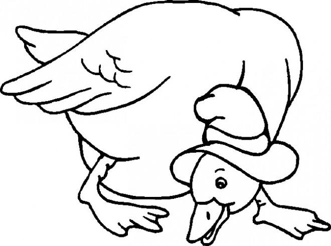 Coloriage et dessins gratuits Cane avec son chapeau à imprimer