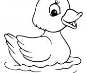 Coloriage et dessins gratuit caneton à imprimer