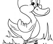 Coloriage et dessins gratuit Caneton mignon à imprimer