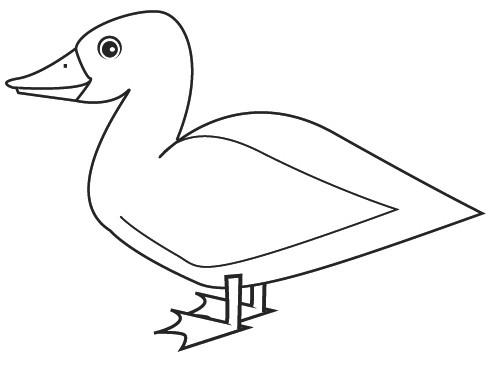 Coloriage et dessins gratuits Dessin très simple de Canard à imprimer