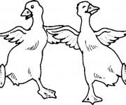 Coloriage Les canards dansent