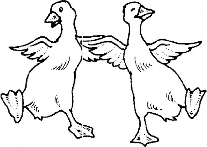 Coloriage et dessins gratuits Les canards dansent à imprimer