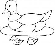Coloriage Mère canard avec ses canetons