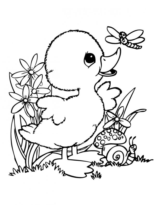 Coloriage et dessins gratuits Un caneton joue dans la nature à imprimer