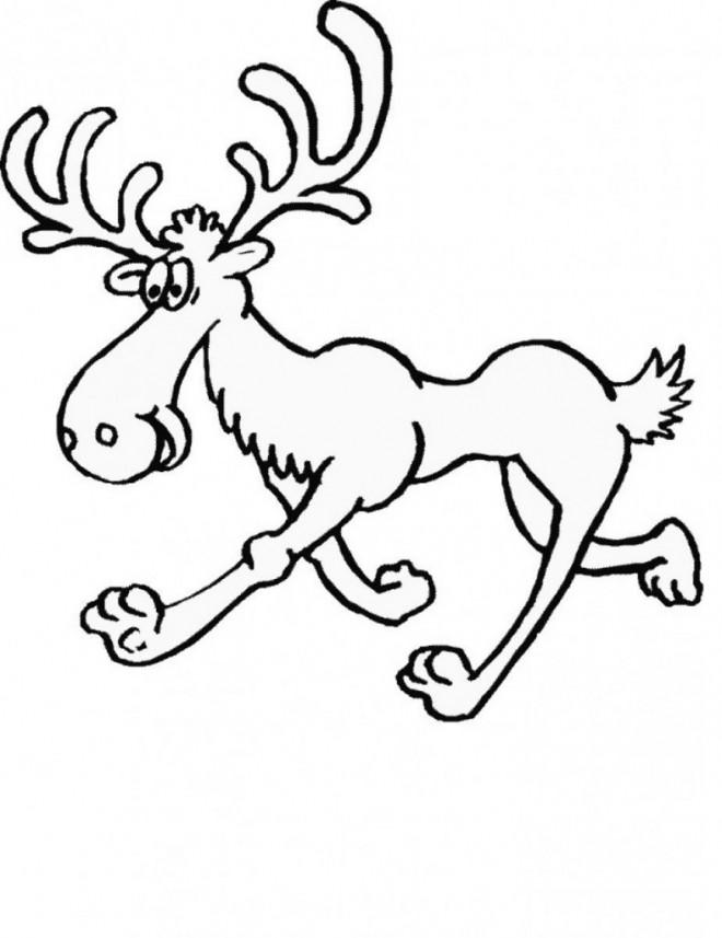 Coloriage Caribou Drole Dessin Gratuit A Imprimer