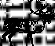 Coloriage et dessins gratuit Caribou en noir à imprimer