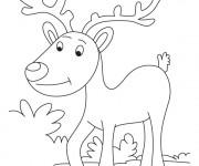 Coloriage Caribou se promène