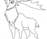 Coloriage et dessins gratuit Le Caribou d'Amérique à imprimer