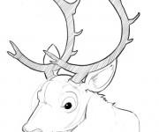 Coloriage Tête de caribou avec ses grosses cornes