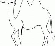 Coloriage dessin  Chameau 18