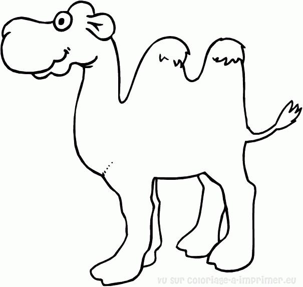 Coloriage chameau avec ses deux bosses dessin gratuit - Dessiner un chameau ...