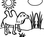 Coloriage Chameau dans la Savane