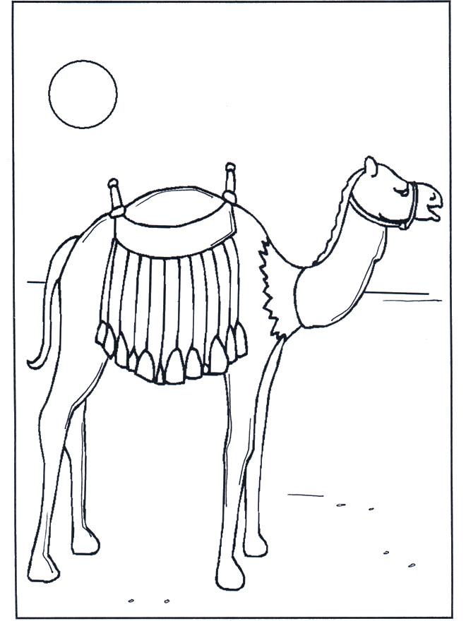 Coloriage Chameau Dans Le Sahara Dessin Gratuit 224 Imprimer