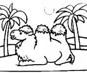 Coloriage et dessins gratuit Chameau désert à imprimer