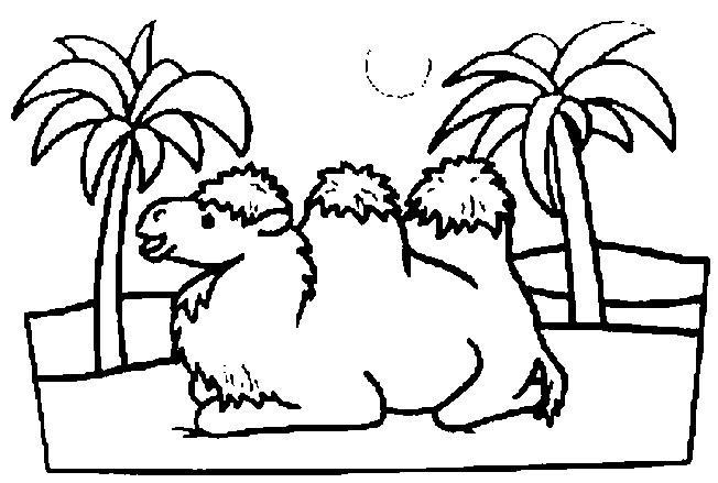 Coloriage et dessins gratuits Chameau désert à imprimer