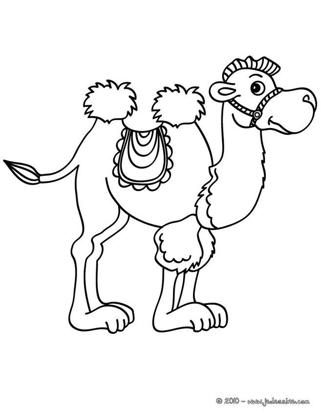 Coloriage chameau dessin en couleur dessin gratuit imprimer - Dessiner un chameau ...