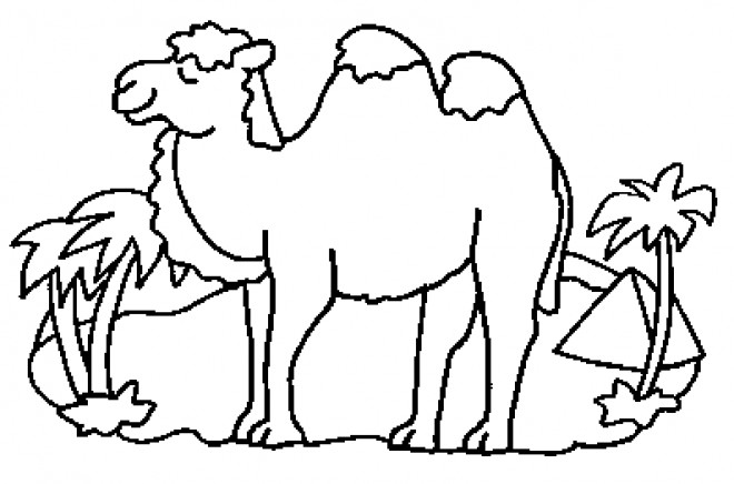 Coloriage et dessins gratuits Chameau egyptien à imprimer