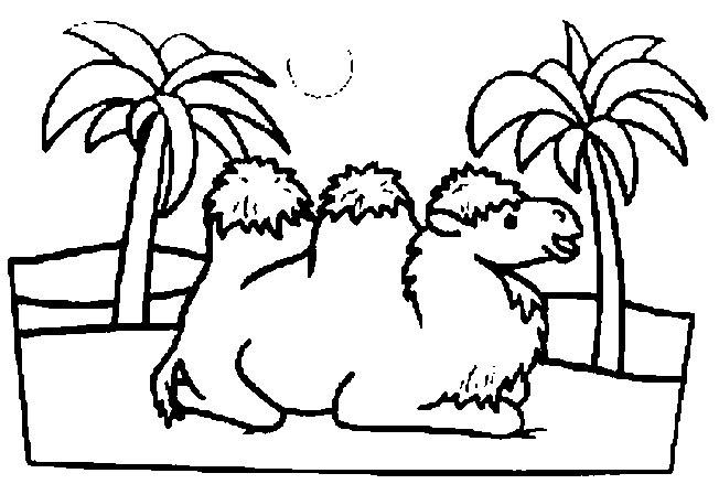 Coloriage et dessins gratuits Chameau en se reposant à imprimer