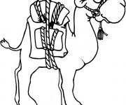 Coloriage et dessins gratuit Chameau et bagage à imprimer