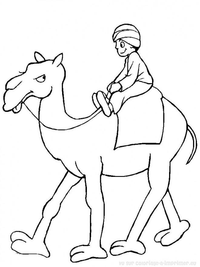 Coloriage et dessins gratuits Chameau et enfant à imprimer
