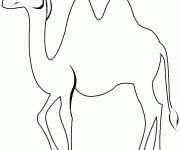 Coloriage et dessins gratuit Chameau facile à colorier à imprimer