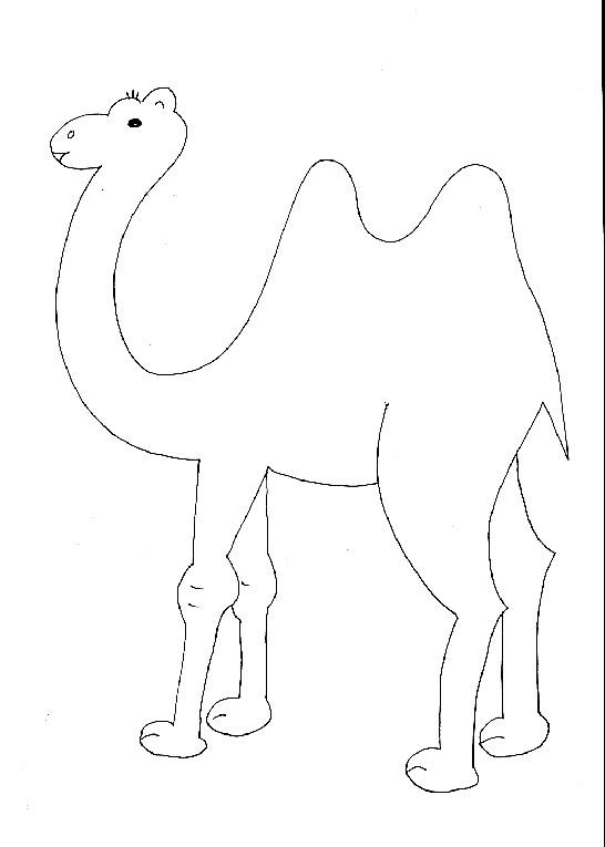 Coloriage chameau facile pour coloriage dessin gratuit - Dessiner un chameau ...