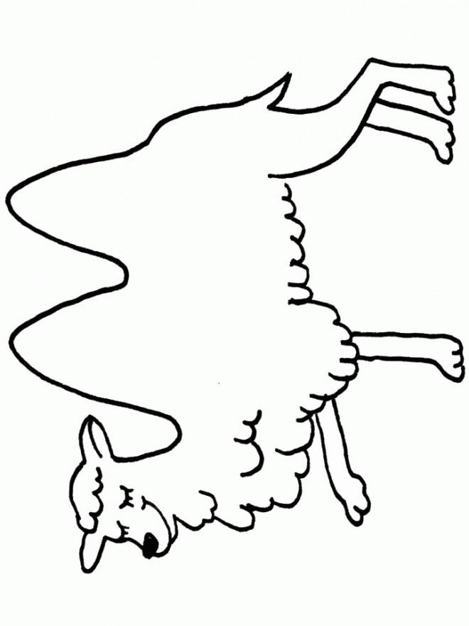 Coloriage chameau fermant les yeux dessin gratuit imprimer - Dessiner un chameau ...