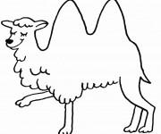 Coloriage et dessins gratuit Chameau heureux à imprimer