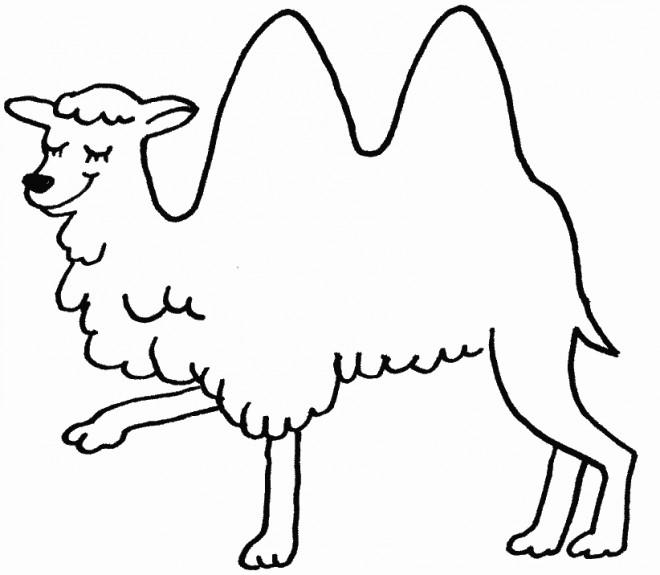 Coloriage chameau heureux dessin gratuit imprimer - Dessiner un chameau ...