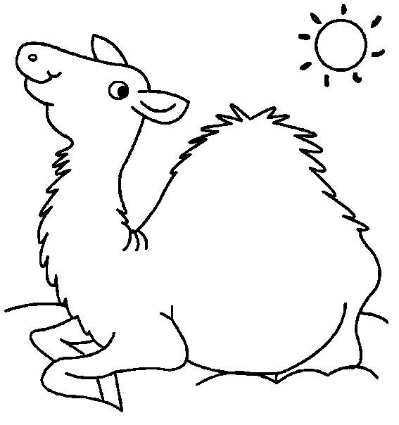 Coloriage chameau sous les rayons de soleil dessin gratuit - Dessiner un chameau ...