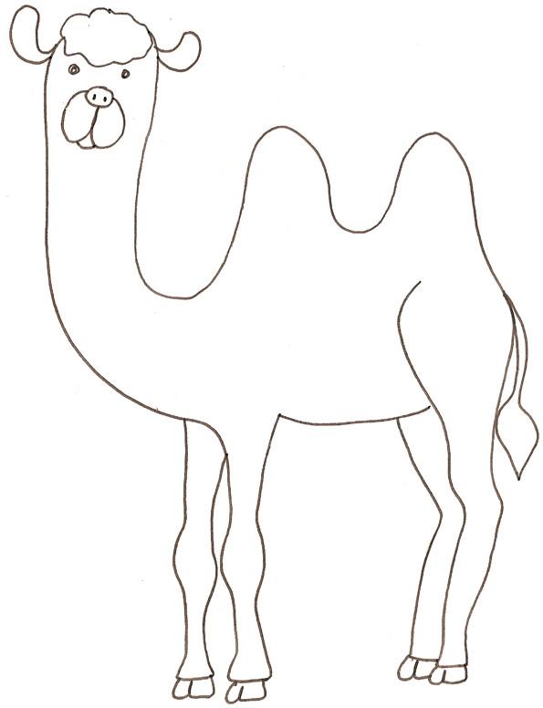 Coloriage dromadaire au crayon dessin gratuit imprimer - Dessiner un chameau ...