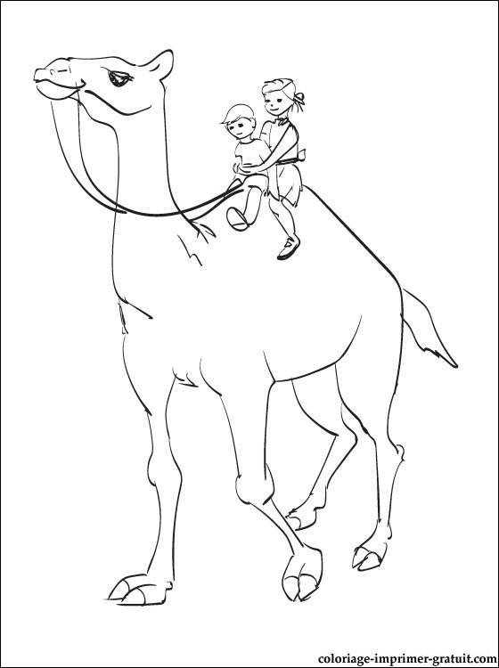 Coloriage les enfants sur un gros dromadaire dessin - Dessiner un chameau ...