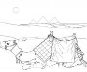 Coloriage tenue de chameau