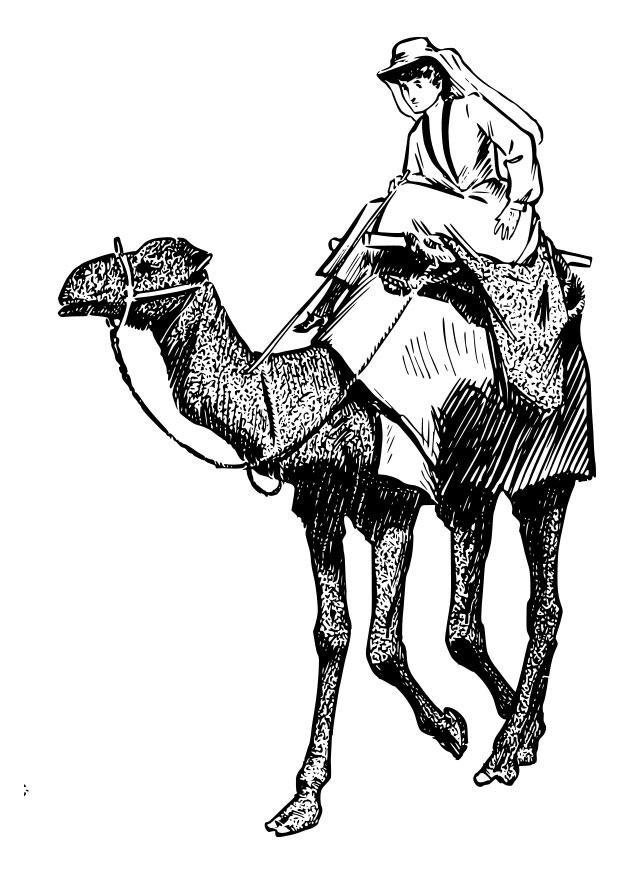 Coloriage et dessins gratuits Un arabe sur son chameau à imprimer