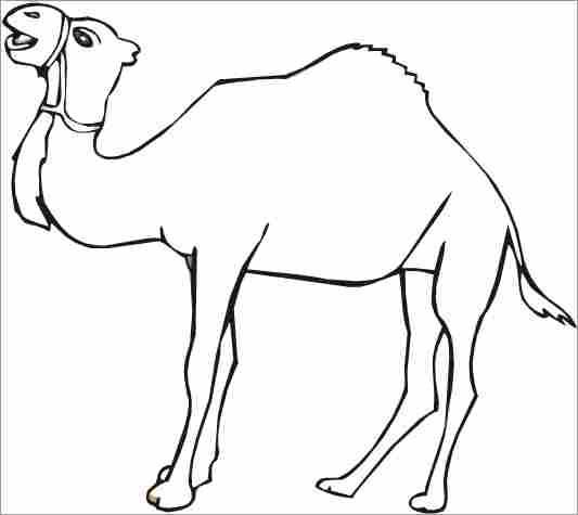 Coloriage et dessins gratuits Un Chameau orientale à imprimer