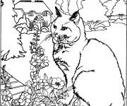 Coloriage Chat dans le jardin de la maison
