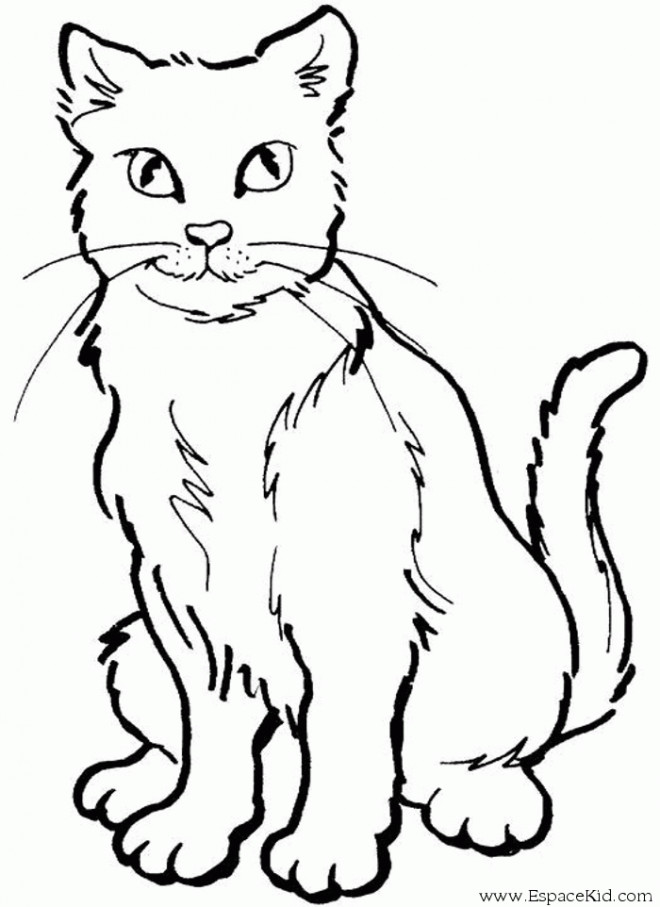 Coloriage chat dessin pour enfant dessin gratuit imprimer - Chat facile et gratuit ...