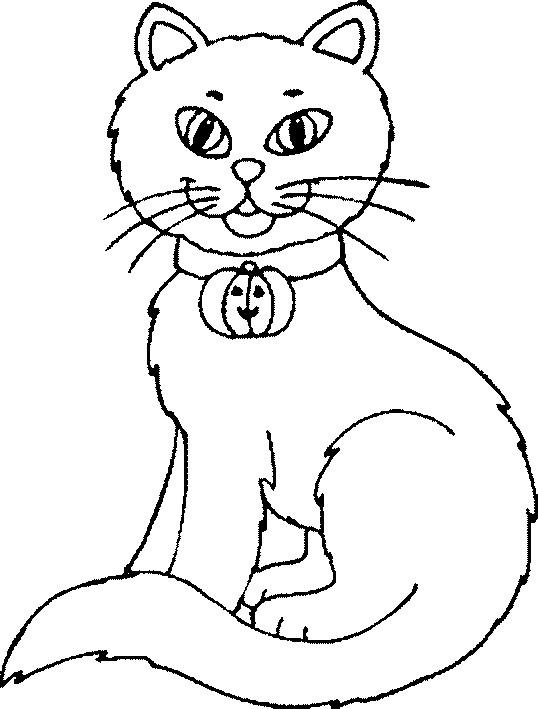 Coloriage et dessins gratuits Chat en portant la citrouille de Halloween à imprimer