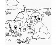 Coloriage Chat et chien dans la nature