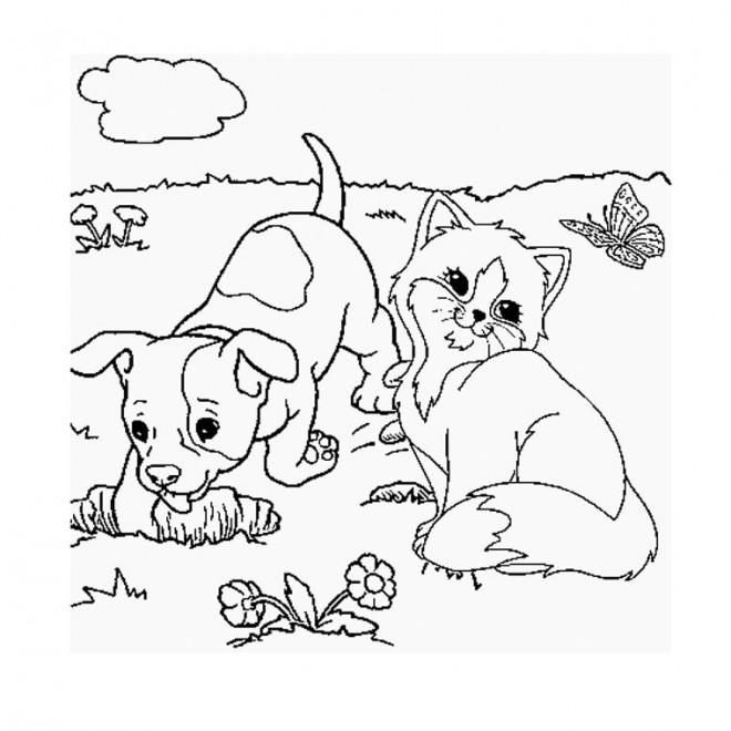Coloriage Chat Et Chien Dans La Nature Dessin Gratuit A Imprimer