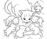 Coloriage et dessins gratuit Chat et ses chatons à imprimer