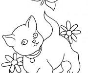 Coloriage et dessins gratuit Chat et une papillon à imprimer